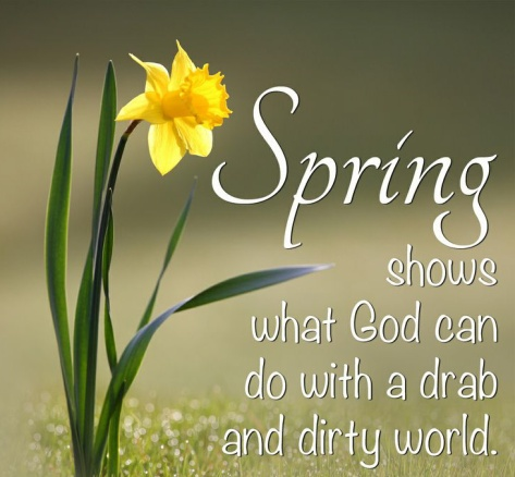 spring 2_edited