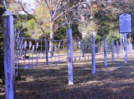 fence at dizzy park