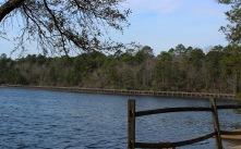 lake - boardwalk