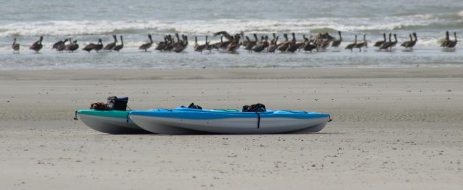 kayak tour3 - may2018